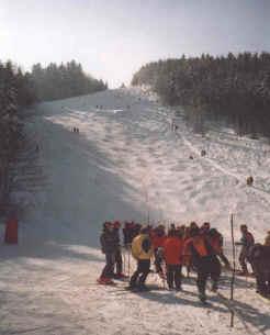 Alpine Skihang