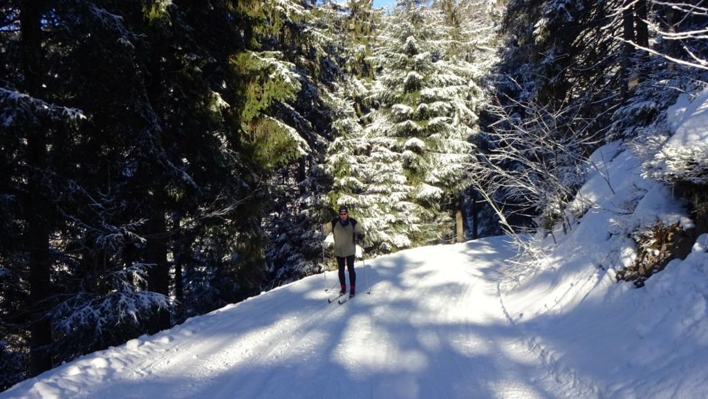 Skiläufer am Rosenkopf