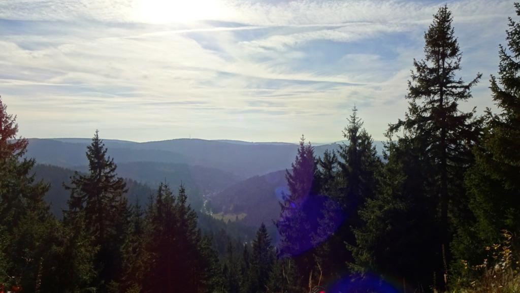 Blick vom Rosenkopf ins Goldlauterer Tal
