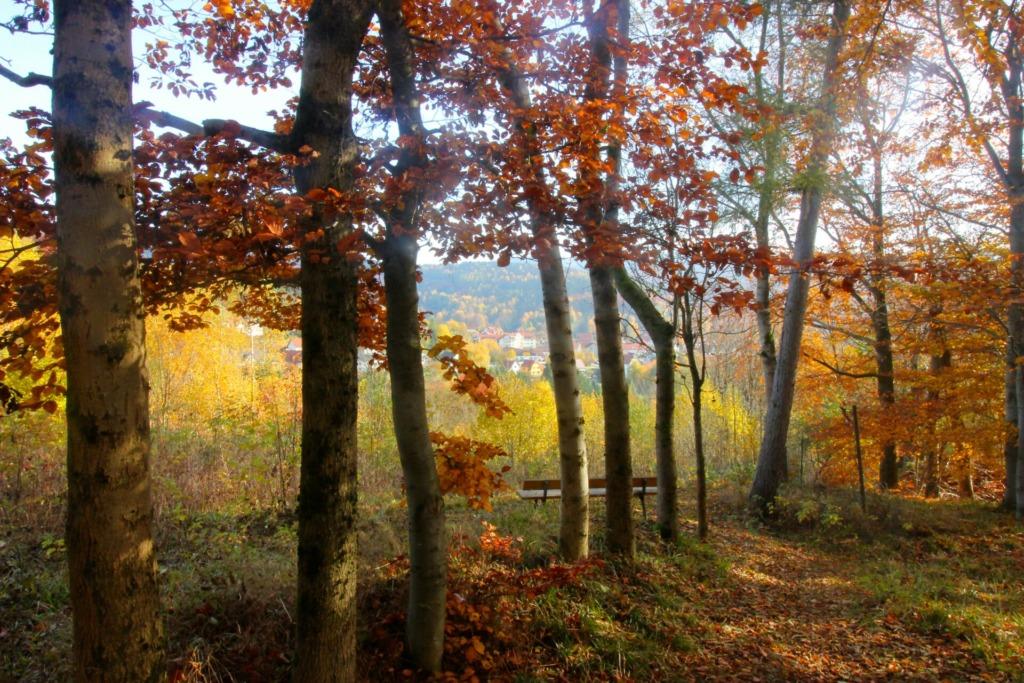 """Herbststimmung mit Blick auf das Wohngebiet """"Breites Feld"""""""