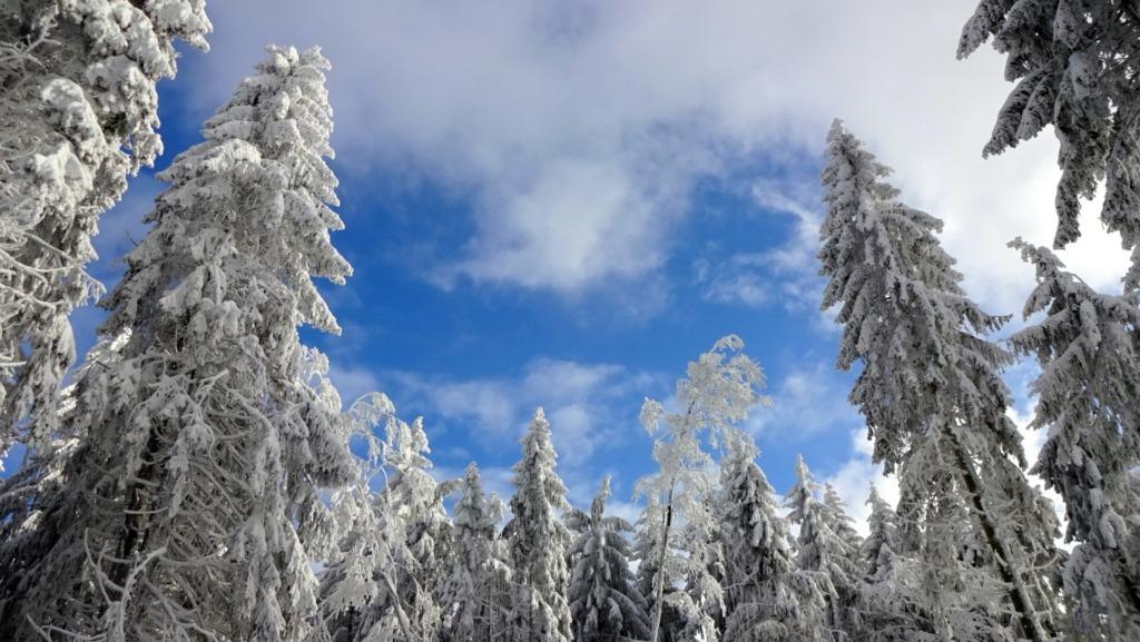 Schnee und Sonne