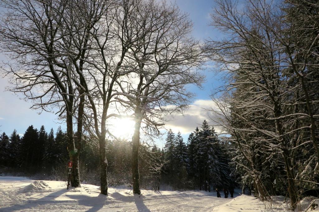 Weg zum Skistadion